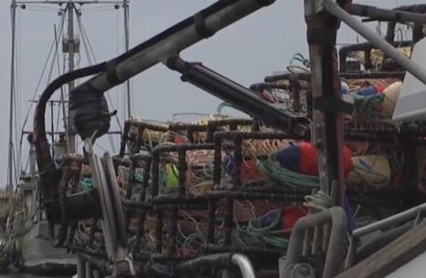 Oregon: Dungeness crab season a go as fisherman, California Crab Fishermen Reduce Asking Price
