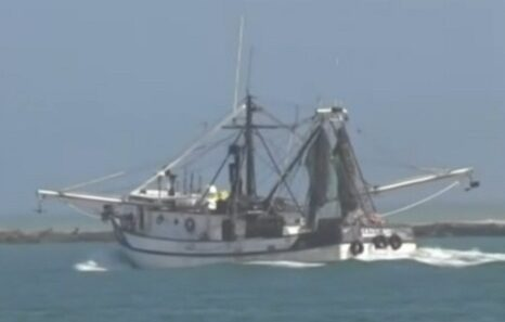 Low fuel prices may have saved Gulf Coast shrimpers