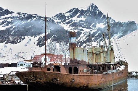A campaign to bring 100-year-old steam trawler Viola back home to Yorkshire from an island off Antarctica