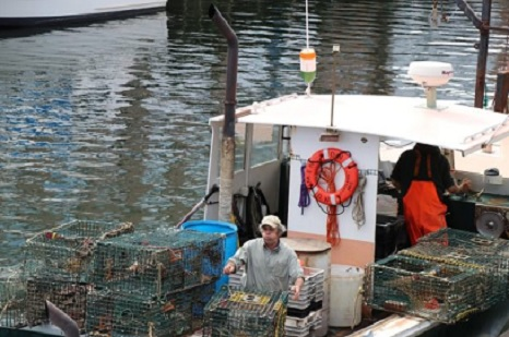 DMR briefs legislature on impact of NOAA's new lobstering rules, options for appeal