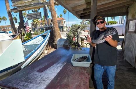 Newport's Dory Fleet hopes hopes to survive the massive oil spill